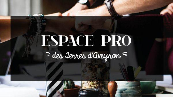 Banniere Espace Pro-V3 [One Page]